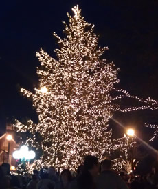 Alpharetta Tree Lighting