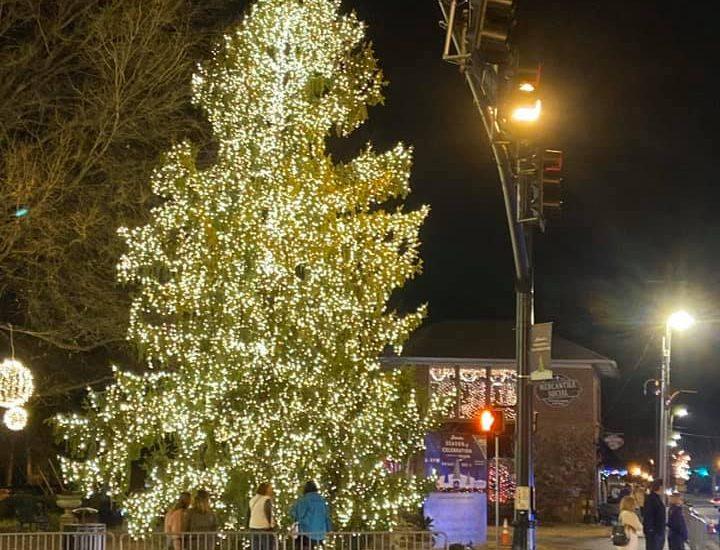 Meer Lighten-Ups the Alpharetta Tree